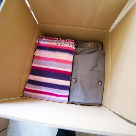 Non Fragile Pack